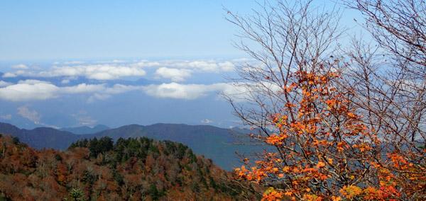 石鎚山 夜明かし峠の紅葉