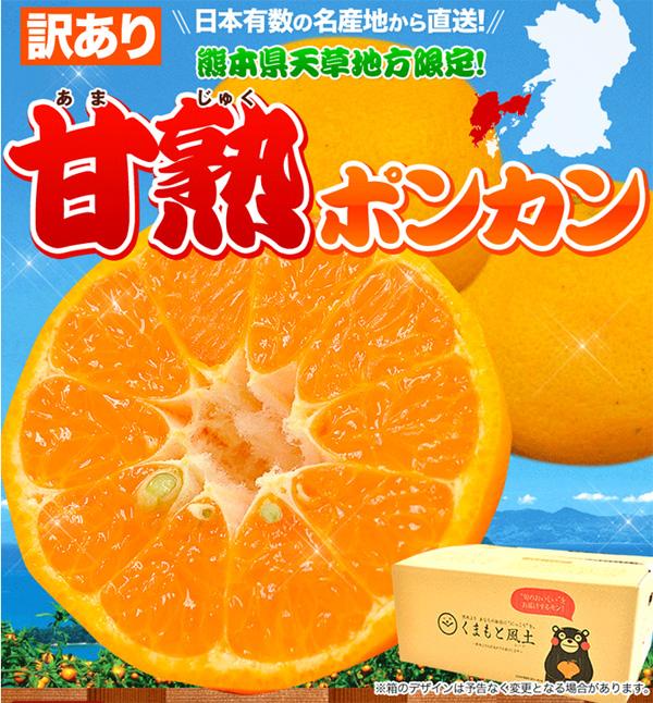 送料無料999円のポンカン