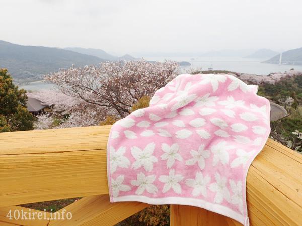開山公園の桜と今治タオル
